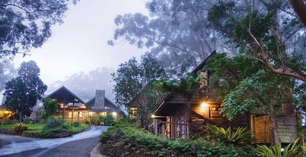 Binna-Burra-Mountain-Lodge